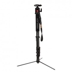 KingJoy MP408FL Monopod