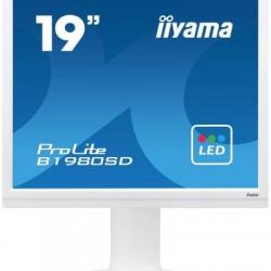 "iiyama ProLite B1980SD-W1, 19"""